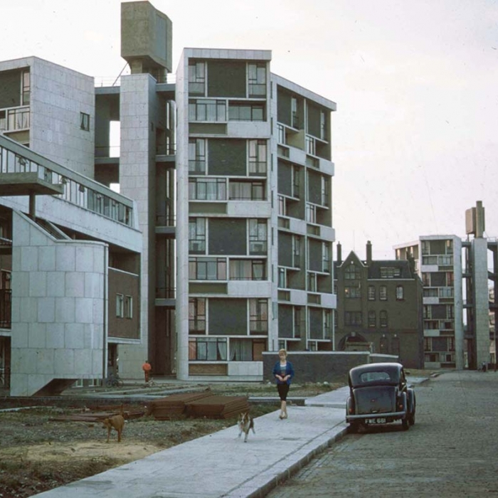 Photograph of newly built modern buildings with cars on a street and a woman walking her dogs